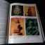 THE ARTISTIC HERITAGE OF THAILAND .A COLLLECTION OF ESSAYS 151 PHOGRAPHS WITH 80 COLOR ปกแข็ง 212 หน้า พิมพ์ปี 1979 thumbnail 8