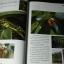 สารานุกรมสมุนไพร เล่ม 2 สยามไภษัชยพฤกษ์ โดย ม.มหิดล ปกแข็ง 253 หน้า ปี 2543 thumbnail 6