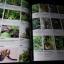 คัมภีร์เภสัชรัตนโกสินทร์ โดย วุฒิ วุฒิธรรมเวช ปกแข็ง 722 หน้า พิมพ์ 1000 เล่ม ปี 2547 thumbnail 11
