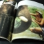 อัลบั้ม เพ็ญพักตร์ ศิริกุล ชุด 2 โดย สำนักพิมพ์หนุ่มสาว ถ่ายภาพโดย ธีรพงศ์ เหลียวรักวงศ์ หนา 130 หน้า ปี 2527 thumbnail 5