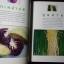 มหัศจรรย์ผัก 108 โดย มูลนิธิโตโยต้า และมหาวิทยาลัยมหิดล พิมพ์ครั้งที่ 8 ปี 2545 หนา 422 หน้า thumbnail 8