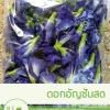 ดอกอัญชัญสด (100 กรัม)