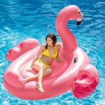 Intex แพร์ยางลายหงษ์ สีชมพูตัวใหญ่ / Mega flamingo island