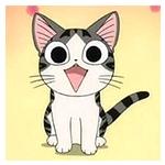 Chi Cat : แมวจี้จัง