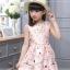 เดรสกระโปรงสีชมพู ลายน่ารักสดใส กระโปรงบานระบายกำลังดี ซิปด้านหลัง งานดีสวยมากค่ะ thumbnail 1