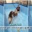 สระว่ายน้ำสำเร็จรูป 15 ฟุต (MR-004) thumbnail 2