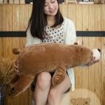 ตุ๊กตาหมีขั้วโลก รุ่นใยนิ่ม ขนาดวัดจากจมูก-ขาหลัง80cm