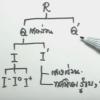 คอร์สติวสอบคณิตO-NETสรุปเนื้อหา จำนวนจริง