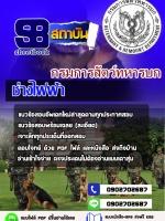 แนวข้อสอบ ช่างไฟฟ้า กรมการสัตว์ทหารบก
