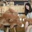 ตุ๊กตาหมีขั้วโลก รุ่นใยนิ่ม ขนาดวัดจากจมูก-ขาหลัง75cm thumbnail 2