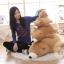 ตุ๊กตาหมีขั้วโลก รุ่นใยนิ่ม ขนาดวัดจากจมูก-ขาหลัง75cm thumbnail 7