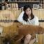 ตุ๊กตาหมีขั้วโลก รุ่นใยนิ่ม ขนาดวัดจากจมูก-ขาหลัง75cm thumbnail 5