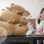 ตุ๊กตาหมีขั้วโลก รุ่นเม็ดโฟม ขนาดวัดจากจมูก-ขาหลัง80cm thumbnail 6