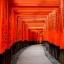 โอซาก้า ทาคายาม่า ชิราคาวาโกะ เกียวโต 5วัน 4คืน มิ.ย.-ต.ค.60 thumbnail 11
