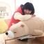 ตุ๊กตาหมีขั้วโลก รุ่นเม็ดโฟม ขนาดวัดจากจมูก-ขาหลัง110cm thumbnail 5