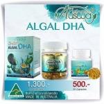 Ausway Algal DHA บรรจุ 90 เม็ด หรือ 60 เม็ด