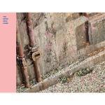 อัลบั้ม #BTS - Album [WINGS : You Never Walk Alone] (RIGHT ver.) : ปกชมพู