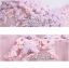พร้อมเช่า ชุดแฟนซีสั้น แบบแขนกุด เนื้อผ้าเป็นตาข่ายแบบซีทรู แต่งดอกและลูกปัด สีม่วง (เชือกผูกหลัง) thumbnail 13