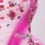 พร้อมเช่า ชุดแฟนซี ชุดราตรียาว ไหล่เฉียง สีชมพูหวาน ปักเลื่อมสีอัญมณี thumbnail 5
