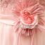 พร้อมเช่า ชุดราตรียาว เกาะอก ลูกไม้ กระโปรงตาข่าย แต่งเข็มกลัดดอก สีโอโรสอ่อน (เชือกผูกหลัง) thumbnail 10