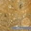 พร้อมเช่า ชุดแฟนซี ชุดราตรี เกาะอก สีเหลือง ลูกไม้ปักทั้งตัว แต่งโบว์ที่เอว (เชือกผูกหลัง) thumbnail 6