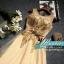 พร้อมเช่า ชุดราตรียาว แขนกุด สีทอง แต่งเกล็ดสีทอง พร้อมมุก ระยิบระยับ เนื้อผ้าตาข่าย มาพร้อมเข็มขัดรูปใบไม้สีทองเข้าชุด (ซิปหลัง) thumbnail 22