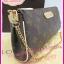 Louis Vuitton Monogram Canvas Eva Clutch Bag **เกรดท๊อปมิลเลอร์** (Hi-End) thumbnail 5
