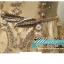 พร้อมเช่า ชุดราตรียาว แขนกุด สีทอง แต่งเกล็ดสีทอง พร้อมมุก ระยิบระยับ เนื้อผ้าตาข่าย มาพร้อมเข็มขัดรูปใบไม้สีทองเข้าชุด (ซิปหลัง) thumbnail 16