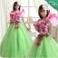 พร้อมเช่า ชุดแฟนซี ชุดราตรียาว สีเขียวอ่อน Cherry Blossom แต่งระบายสีชมพู ปักเลื่อมละเอียด thumbnail 1