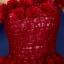พร้อมเช่า ชุดแฟนซี ชุดราตรียาว สีแดง ไหล่เฉียง ตัวชุดเป็นผ้าแก้ว แต่งดอกสวย ไหล่ซ้ายมีโบว์ เชือกผูกหลัง thumbnail 8