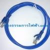 สายแลน (Lan) สีฟ้า CAT5e ยาว 1 เมตร