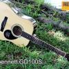 Greg Bennett GD-100S ( Solid Sitka Spruce Top )