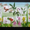 แสตมป์ชุด พืชมีดอกตระกูลขิง (Zingiberaceae) ชุดปีใหม่ 2560 ปี 2559 (ยังไม่ใช้)