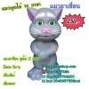 แมวอาเซี่ยนมาใหม่พูดได้ 10 ภาษา พร้อมเสียงสัตว์ เสียงตลก