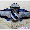 ปีกโดดร่มตำรวจ ชั้นกิตติมศักดิ์ - (แบบ 1)