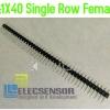 40 Pin Single Row male