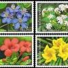 แสตมป์ชุด ดอกไม้ไทย วันปีใหม่ ชุดที่ 15 ปี 2546 (ยังไม่ใช้)