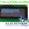 LCD 20x4 White on Black