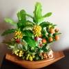 C003-สวนต้นไม้มงคล มะยม ส้ม ขนุน กล้วย_ไซร์ 4-6 นิ้ว