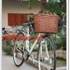 ตะกร้าพลาสติกจักรยาน ทรงวินเทจ
