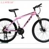 จักรยานเสือภูเขา FAST S 1.1 เฟรม HITEN 21 สปีด Shimano