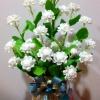 J009-ดอกมะลิ