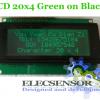LCD 20x4 Green on Black
