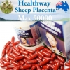 รกแกะ Healthway Sheep Placenta MAX 50000