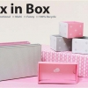 Box in Box (Crown Pink)