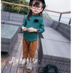 เสื้อ สีเขียว แพ็ค 6ชุด ไซส์ 80cm-90cm-90cm-100cm-100cm-110cm