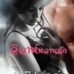 E-BOOK วิวาห์หวานรัก