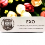เข็มกลัด/ป้ายชื่อ EXO