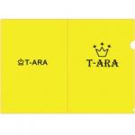 แฟ้ม T-ARA (สีเหลือง)