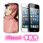 Case iPhone5 GD